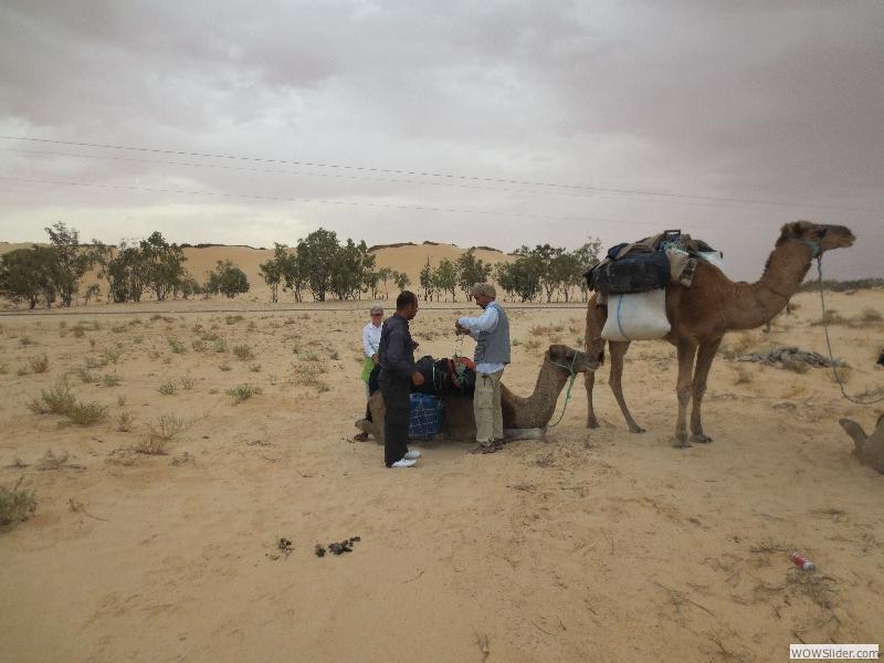 Méharée Désert Sud Tunisie Octobre 2012